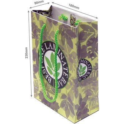 LUXURY LAMINATED PAPER CARRIER GIFT BAG